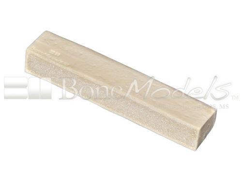 BoneModels BS003D 01 1 500x375 - BS-003D: D1+D4 Bone stick.