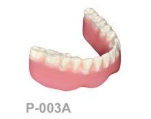 BoneModels P003A 1 220x174 - P-003A: Dentadura completa mandibular apoyada sobre hueso.