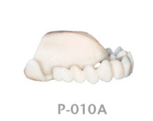 BoneModels P010A 1 220x174 - P-010A: Provisional restoration for fully maxilla.