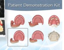 BoneModels PDK3 220x174 - Patient Demonstration Kit. Model 3.