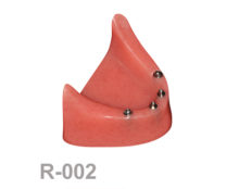 BoneModels R002 1 220x174 - R-002: Rose Mandible without protheses.