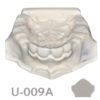 BoneModels U009A 1 100x100 - U-008A: Edentulous maxilla with soft tissue and sinuses.
