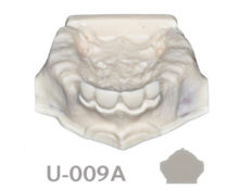BoneModels U009A 1 220x174 - U-009A: Partially edentulous maxilla.