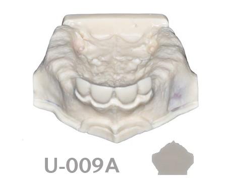 BoneModels U009A 1 - U-009A: Partially edentulous maxilla.