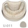 BoneModels U011 100x100 - U-010A: Partially edentulous maxilla with soft tissue.