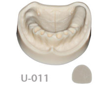 BoneModels U011 220x174 - U-011: Edentulous maxilla after extractions without soft tissue.