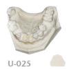 BoneModels U025 100x100 - U-024B: Partially edentulous maxilla with 1 socket, healed ridges, 1 sinus (thicker bone in the sinus) and soft tissue.