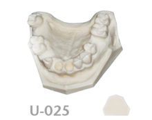 BoneModels U025 220x174 - U-025: Partially edentulous maxilla with 2 sockets in both centrals and healed ridges.
