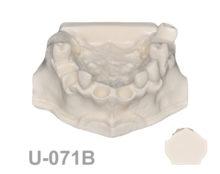 BoneModels U071B 1 220x174 - U-071B: Maxillary model for implant placement.