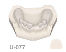 BoneModels U077 1 220x174 - U-077: Maxillary model with some Ivorine teeth in the anterior area and healed ridges. Without soft tissue.