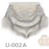 BoneModels U 002A 100x100 - U-010A: Partially edentulous maxilla with soft tissue.