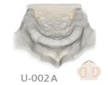 BoneModels U 002A 220x174 - U-002A: Edentulous maxilla with sinuses.