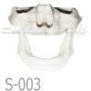 S 003 MANDIBULA VELADA PORTADA 100x100 - S-002: Half skull & articulated mandible with big resorption.